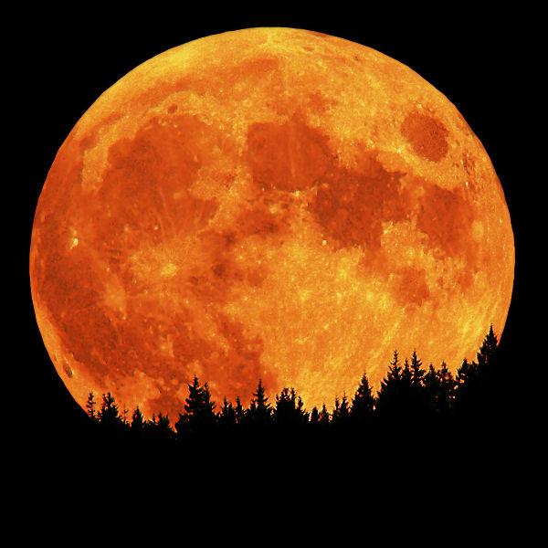full-moon-phase